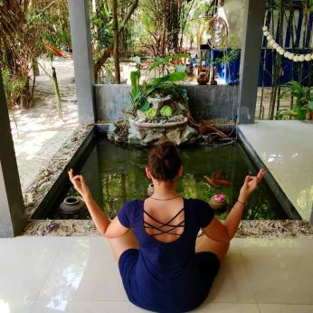 Meditation in the morning: Talking to my coi carps